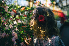 Beautiful flowers in my garden. Beauty in a summer garden Stock Images