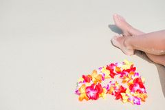 Beautiful flowers near female feet on a sandy beach. On the ocean in the tropics Stock Image