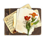 Beautiful flowers on the old vintage album Royalty Free Stock Photo