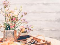 Beautiful flowers in old vintage tea pot on beautiful wooden tra. Y, spring mood still life photo for holiday design Royalty Free Stock Photography