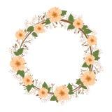 Beautiful flowers ornament Stock Image