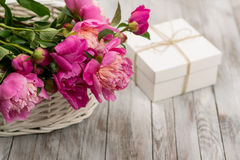 Beautiful flowers peonies in basket with gift box on light wooden background. Royalty Free Stock Photo