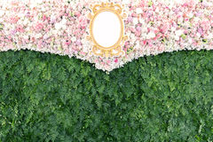 Beautiful flowers and plant backdrop  for wedding party. Royalty Free Stock Images