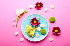 Beautiful flowers and plate on pink background, overhead view Stock Image