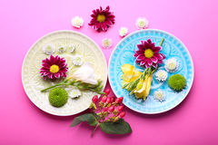 Beautiful flowers with plates on pink background, overhead view Royalty Free Stock Photos