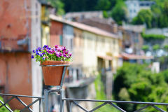 Beautiful flowers pot with blossoming flowers in scenic town of Nemi. Italy Stock Photography