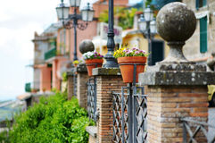 Beautiful flowers pots with blossoming flowers in scenic town of Nemi. Italy Stock Photography