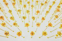 Beautiful of flowers of roses of gold color, Golden tinted flowers like romantic background. The beautiful of flowers of roses of gold color, Golden tinted stock photography