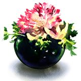 Beautiful flowers in round blue vase isolated, watercolor illustration on white stock illustration