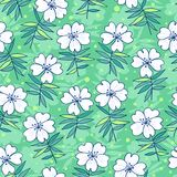 Beautiful flowers seamless pattern Stock Photography