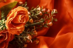Beautiful flowers for special people. Roses like plastic beautiful delivery to special people Royalty Free Stock Photos