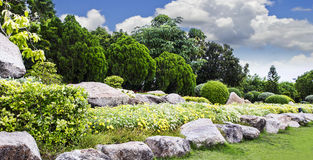 Beautiful flowers in the Suan Luang Rama 9 Public Park. For design work Royalty Free Stock Photo
