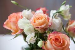 Beautiful flowers Stock Photography