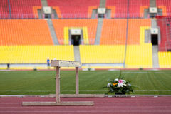 Beautiful flowers on the track stadium. Stock Photography