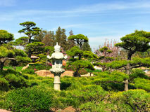 Beautiful flowers and trees in Japanese Garden.  Stock Photo