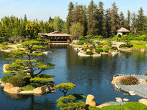 Beautiful flowers and trees in Japanese Garden.  Stock Photos
