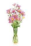 Beautiful flowers in vase isolated stock image
