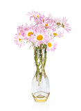 Beautiful flowers in vase isolated stock images