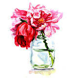 Beautiful flowers in vase isolated Stock Photo