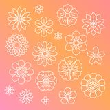Beautiful flowers vector flora seamless Stock Photography