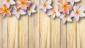 Beautiful flowers on vintage wooden background Stock Photography