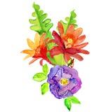 Beautiful flowers, watercolor illustration Stock Photo