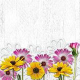 Beautiful flowers on a white wooden background Royalty Free Stock Photo