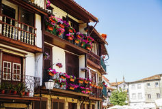 Beautiful flowers on the windows of the house. Portugal Royalty Free Stock Photo