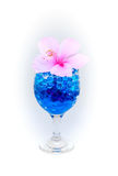 Beautiful flowers in wine glass with hydrogel isolated on white Royalty Free Stock Photography