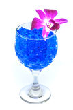 Beautiful flowers in wine glass with hydrogel isolated on white Stock Photo