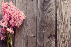 Beautiful flowers on a wooden background Stock Photos