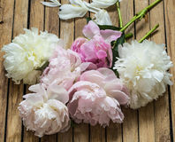 Beautiful flowers on wooden background, various , place for text, closeup royalty free stock photography