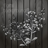 Beautiful flowers on a wooden texture. Royalty Free Stock Photos