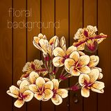 Beautiful flowers on a wooden texture. Royalty Free Stock Photography