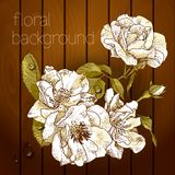 Beautiful flowers on a wooden texture. Royalty Free Stock Image