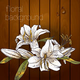 Beautiful flowers on a wooden texture. Royalty Free Stock Images