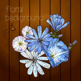 Beautiful flowers on a wooden texture. Stock Photography