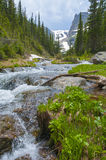 Beautiful flowing creek with view of Notchtop Peak - Rocky Mount Royalty Free Stock Photo