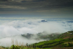 Beautiful flowing fog on the mountain. Stock Photography