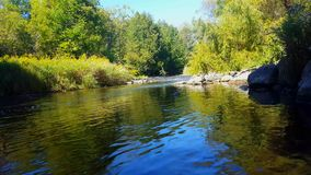 Beautiful Flowing River Water With Riverside Forest. Sunny Riverbank Trees Along Gentle Wide Stream.