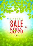 Beautiful flyer for spring sale Royalty Free Stock Photography