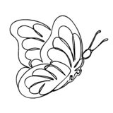 Beautiful flying butterfly is drawn in one line. Line art