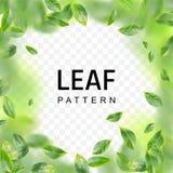 Flying Green Leaf Vortex Vector Realistic 3d Illustration stock illustration