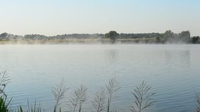 Beautiful fog floats in morning above water surface of a lake stock footage