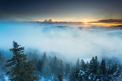 Beautiful fog over forest in mountin with sunrise in background.  Stock Photo