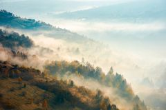 Beautiful foggy autumn background. Lovely scenery with forest on hill Stock Images