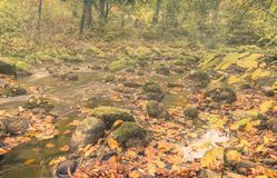 Misty mountain creek. Ch Royalty Free Stock Photography