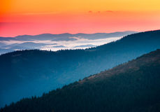 Beautiful foggy morning  in the mountains. Beautiful foggy morning  in the summer mountains Stock Image
