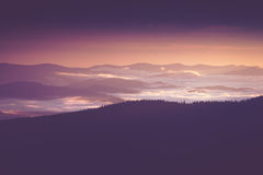 Beautiful foggy morning  in the mountains. Beautiful foggy morning  in the summer mountains Stock Photo