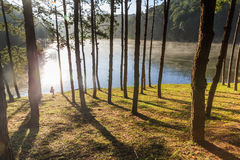 Beautiful foggy sunrise on a lake,Mae Hong Son,Thialand. Stock Photography